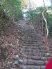 f:id:honda-jimusyo:20101204150323j:plain