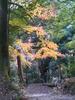f:id:honda-jimusyo:20101204150614j:plain