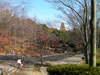 f:id:honda-jimusyo:20101205114641j:plain