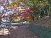 f:id:honda-jimusyo:20101205140032j:plain