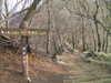 f:id:honda-jimusyo:20101226141901j:plain