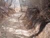 f:id:honda-jimusyo:20110116121110j:plain