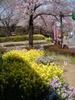 f:id:honda-jimusyo:20110406125446j:plain