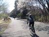 f:id:honda-jimusyo:20110406134806j:plain