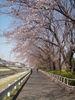 f:id:honda-jimusyo:20110406141441j:plain