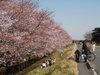 f:id:honda-jimusyo:20110406150506j:plain