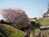 f:id:honda-jimusyo:20110413085205j:plain