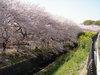f:id:honda-jimusyo:20110413085713j:plain