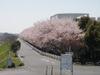 f:id:honda-jimusyo:20110413100913j:plain
