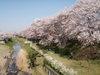 f:id:honda-jimusyo:20110413144613j:plain