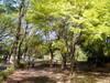 f:id:honda-jimusyo:20110424101438j:plain