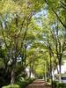 f:id:honda-jimusyo:20110424101939j:plain