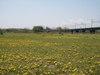f:id:honda-jimusyo:20110424114525j:plain