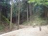 f:id:honda-jimusyo:20110501103107j:plain