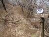 f:id:honda-jimusyo:20110502103506j:plain