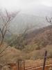 f:id:honda-jimusyo:20110502103857j:plain