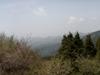 f:id:honda-jimusyo:20110502113711j:plain