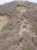 f:id:honda-jimusyo:20110502131901j:plain