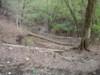 f:id:honda-jimusyo:20110502163536j:plain