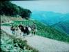 f:id:honda-jimusyo:20110504060619j:plain