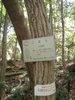 f:id:honda-jimusyo:20110514104319j:plain
