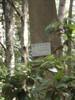 f:id:honda-jimusyo:20110514104841j:plain