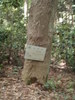 f:id:honda-jimusyo:20110514105013j:plain