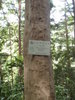 f:id:honda-jimusyo:20110514105329j:plain