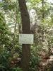 f:id:honda-jimusyo:20110514110203j:plain