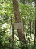 f:id:honda-jimusyo:20110514110838j:plain