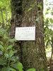 f:id:honda-jimusyo:20110514111520j:plain