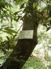 f:id:honda-jimusyo:20110514111724j:plain