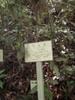 f:id:honda-jimusyo:20110514111756j:plain