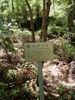 f:id:honda-jimusyo:20110514112005j:plain