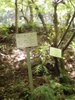 f:id:honda-jimusyo:20110514112333j:plain