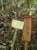 f:id:honda-jimusyo:20110514112506j:plain