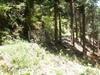 f:id:honda-jimusyo:20110514120622j:plain