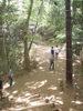 f:id:honda-jimusyo:20110514133346j:plain