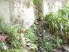 f:id:honda-jimusyo:20110514143720j:plain