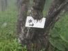 f:id:honda-jimusyo:20110619122123j:plain