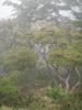 f:id:honda-jimusyo:20110619123128j:plain