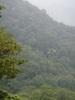 f:id:honda-jimusyo:20110629120509j:plain