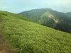 f:id:honda-jimusyo:20110714144728j:plain