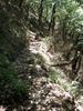 f:id:honda-jimusyo:20110723123952j:plain