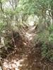 f:id:honda-jimusyo:20110723132951j:plain