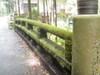 f:id:honda-jimusyo:20110806100228j:plain