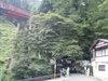 f:id:honda-jimusyo:20110806101758j:plain