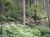 f:id:honda-jimusyo:20110806105603j:plain