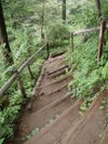 f:id:honda-jimusyo:20110806112502j:plain
