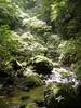 f:id:honda-jimusyo:20110806114628j:plain